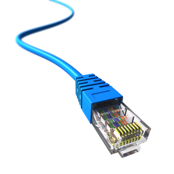Picture of a blue ethernet cable.