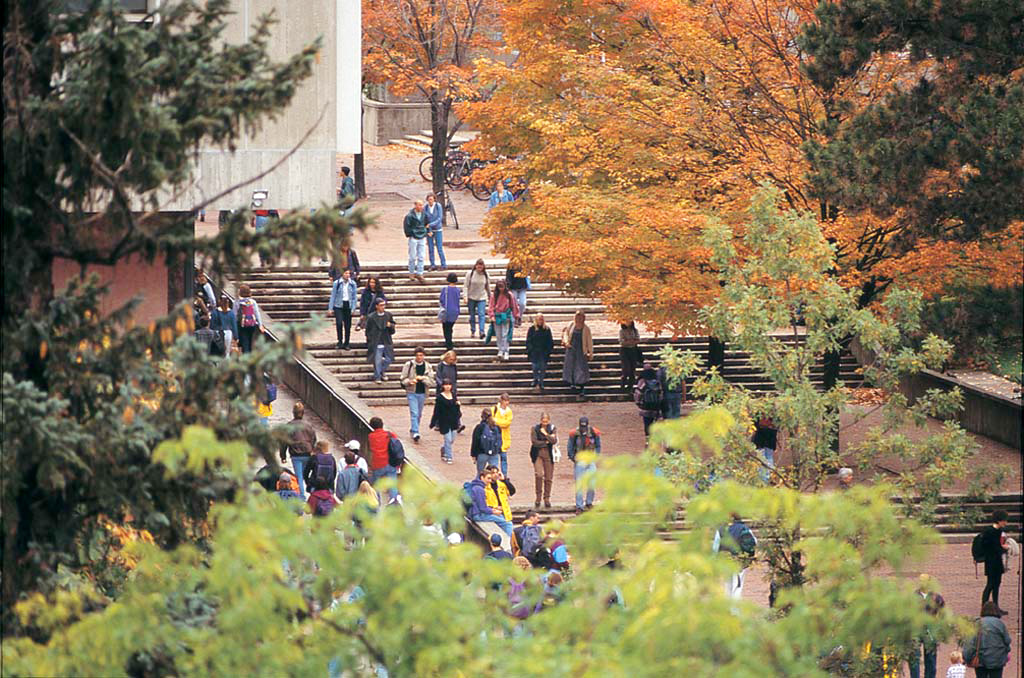 Picture of students walking on the library steps