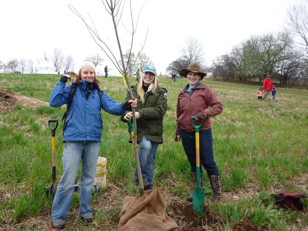 Picture of a three young women planting a tree